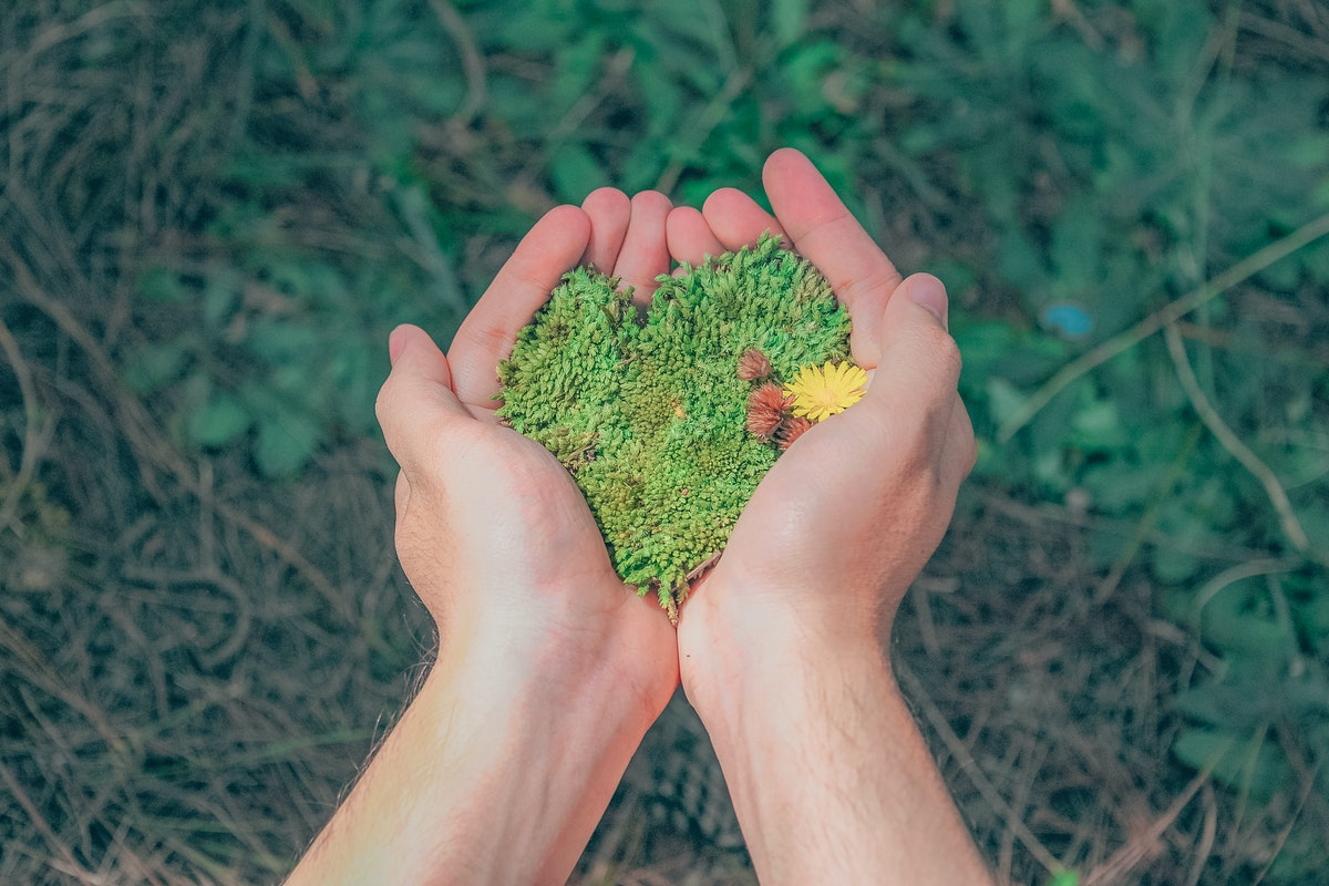 How to Change Your Ways to Help the Environment